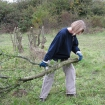 Volunteer removing scrub from wildflower meadow 2