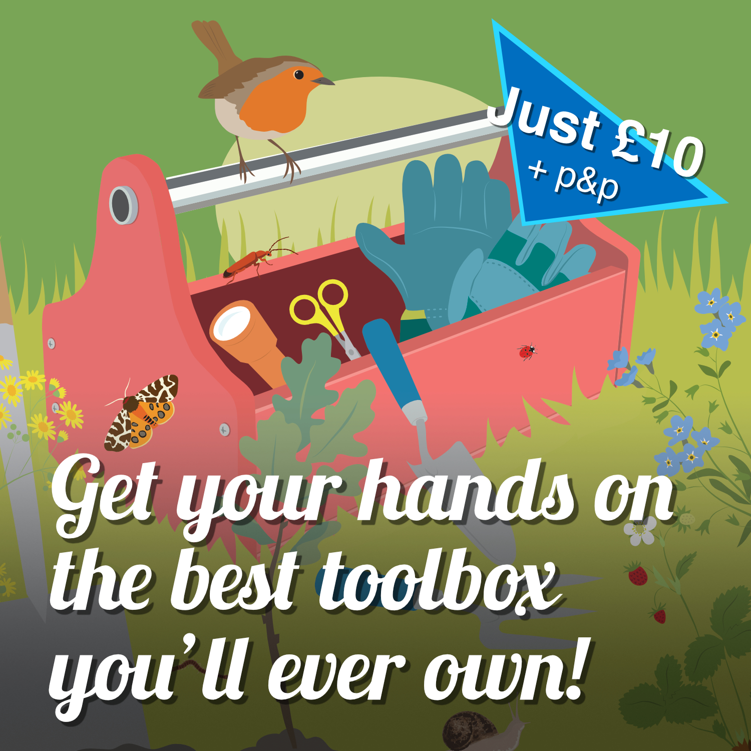 illustration of a toolbox surrounded by wildlife. Advert for new guidebook.