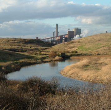 Photo looking over the Fleet at Coatham marsh towards the steel works in the background
