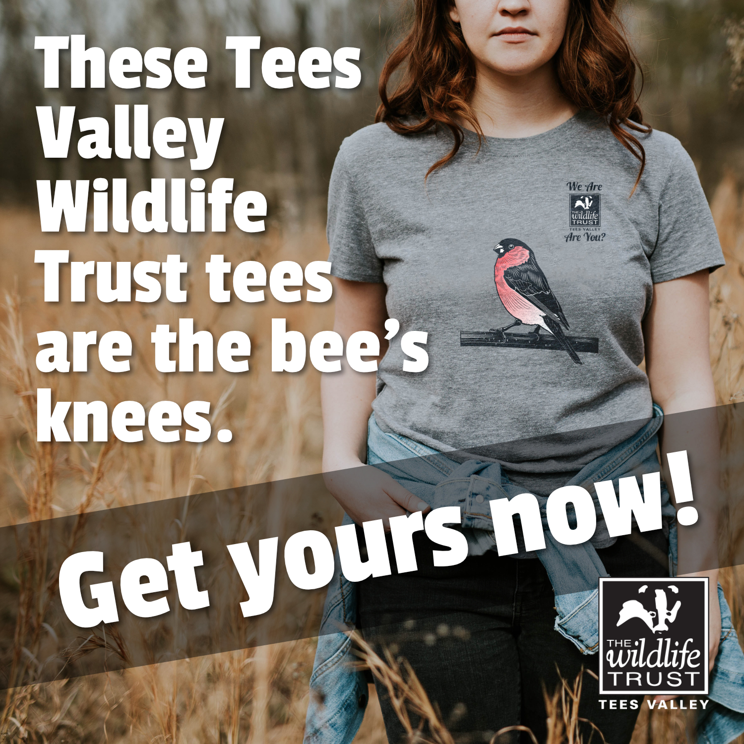 Get Yours Now! Advert showing a youn woman wearing a grey Tees Valley Wildlife Trust t-shirt with a bullfinch illustration and logo on it.