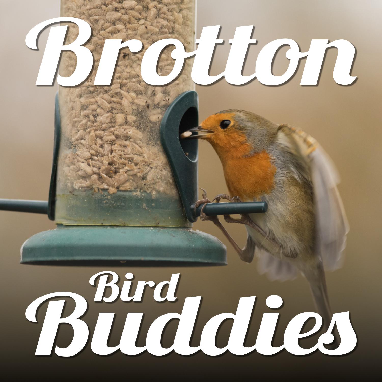 A robin on a seed feeder. Text reads 'Brotton Bird Buddies'.